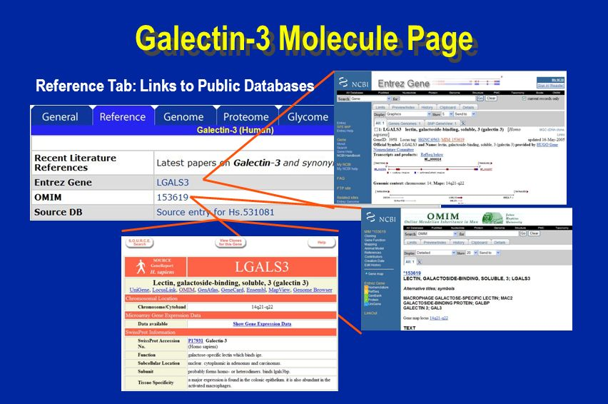 Galectin-3 Molecule Page Reference Tab: Links to Public Databases