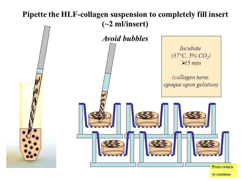 When the epithelium is confluent, create air-liquid interface (ALI) Aspirate the medium Press return to continue