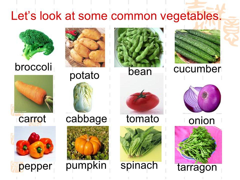 Lets look at some common vegetables. cucumber broccoli pumpkin tarragon pepper potato bean carrotcabbagetomato onion spinach
