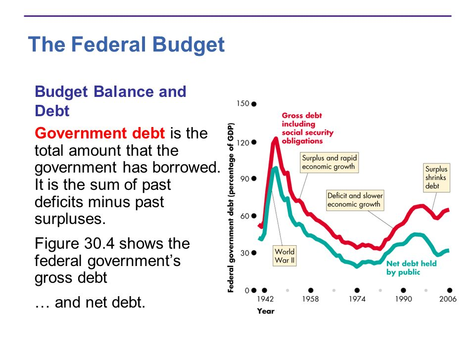 The Federal Budget Government debt is the total amount that the government has borrowed.