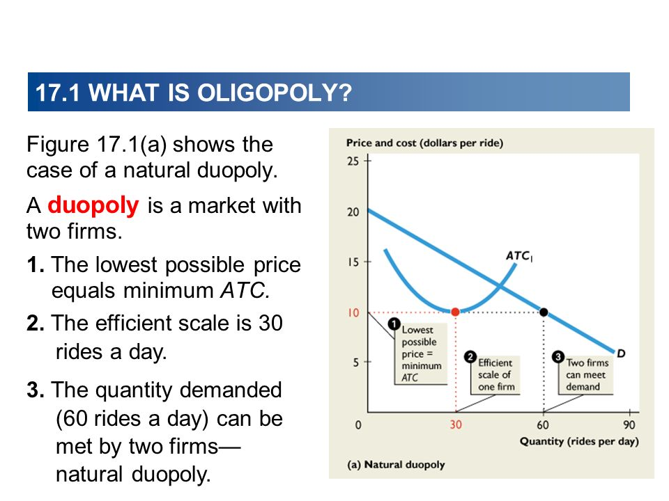 Figure 17.1(b) shows the case of a natural oligopoly with three firms.