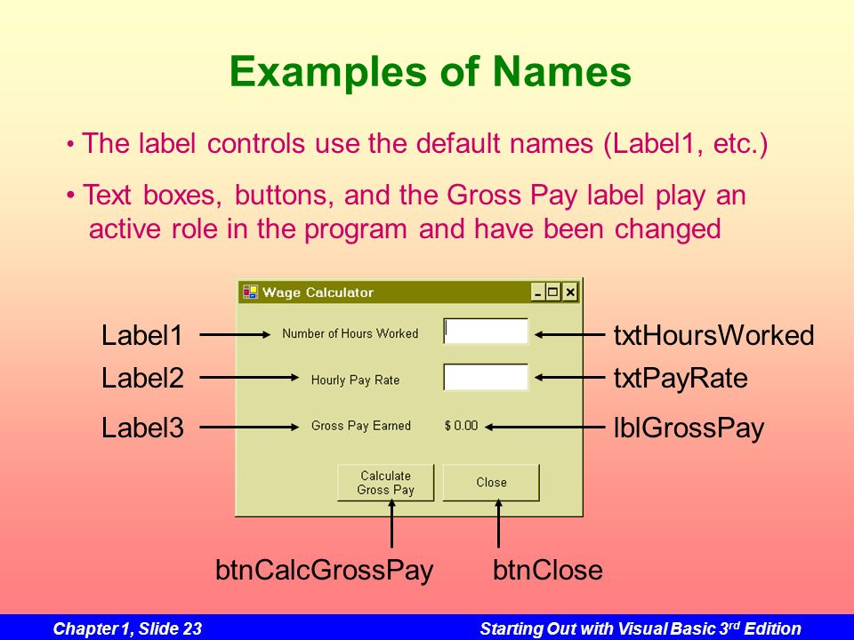 Chapter 1, Slide 23Starting Out with Visual Basic 3 rd Edition Examples of Names btnCalcGrossPaybtnClose txtHoursWorked txtPayRate lblGrossPay Label1