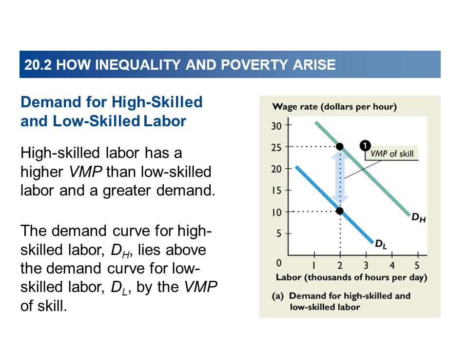20.2 HOW INEQUALITY AND POVERTY ARISE High-skilled labor has a higher VMP than low-skilled labor and a greater demand. The demand curve for high- skil