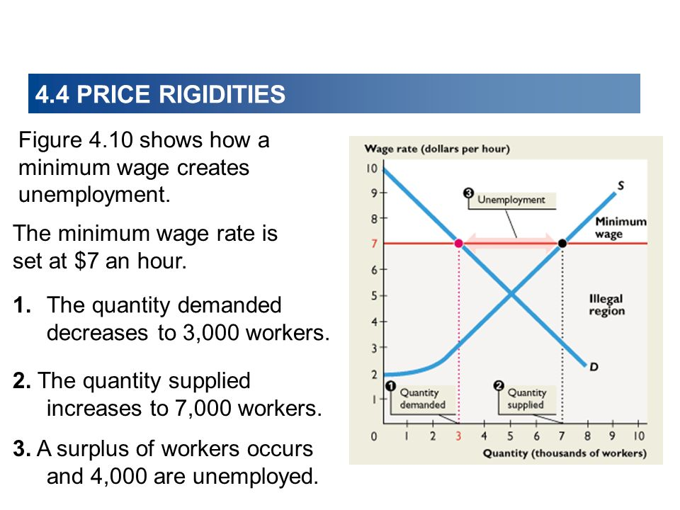Figure 4.10 shows how a minimum wage creates unemployment. The minimum wage rate is set at $7 an hour. 1.The quantity demanded decreases to 3,000 work