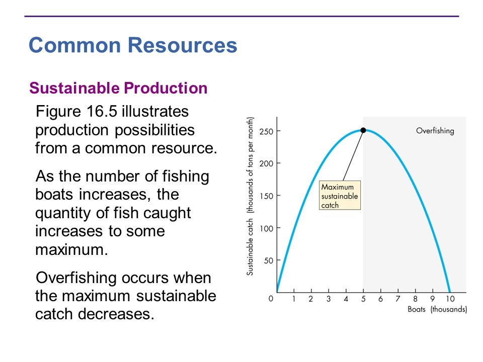 Common Resources Sustainable Production Figure 16.5 illustrates production possibilities from a common resource. As the number of fishing boats increa