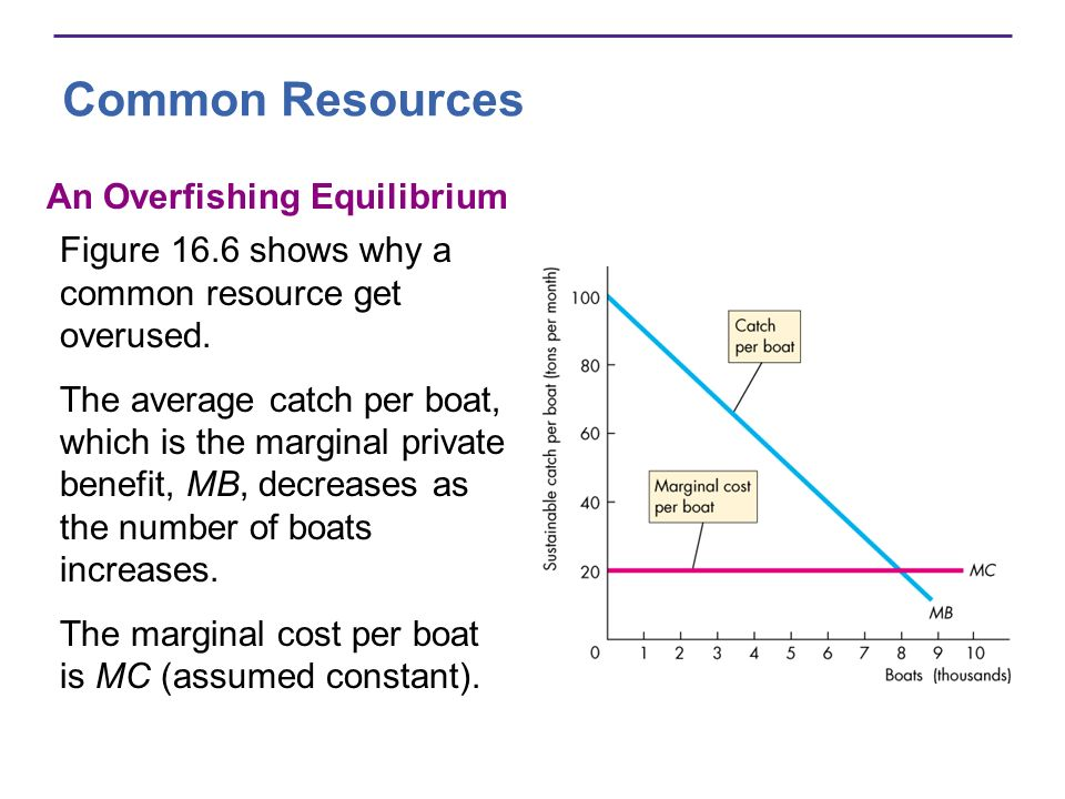 Common Resources An Overfishing Equilibrium Figure 16.6 shows why a common resource get overused. The average catch per boat, which is the marginal pr