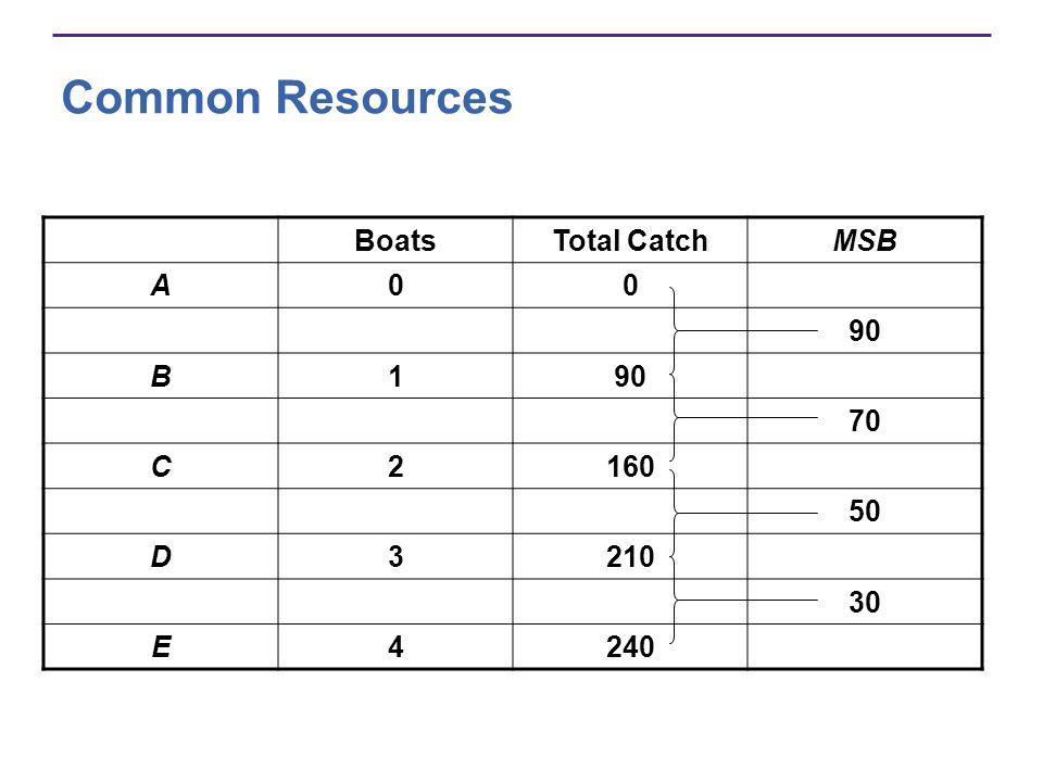Common Resources BoatsTotal CatchMSB A00 90 B1 70 C2160 50 D3210 30 E4240