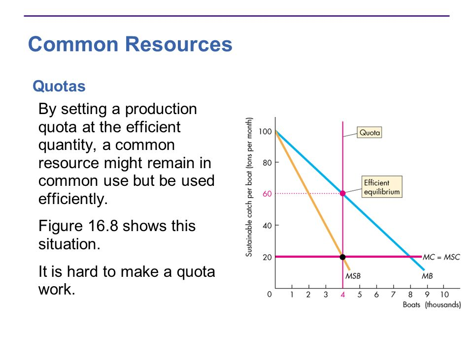 Common Resources Quotas By setting a production quota at the efficient quantity, a common resource might remain in common use but be used efficiently.