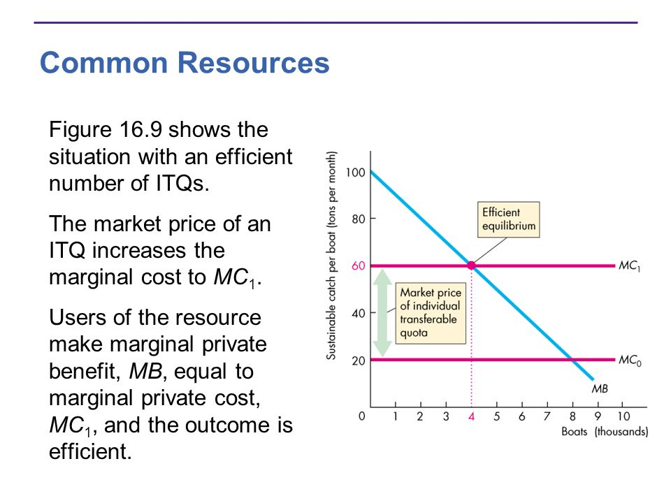 Common Resources Figure 16.9 shows the situation with an efficient number of ITQs. The market price of an ITQ increases the marginal cost to MC 1. Use