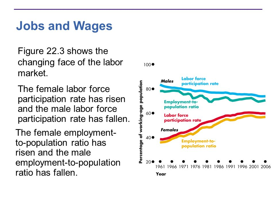 Jobs and Wages Figure 22.3 shows the changing face of the labor market. The female labor force participation rate has risen and the male labor force p