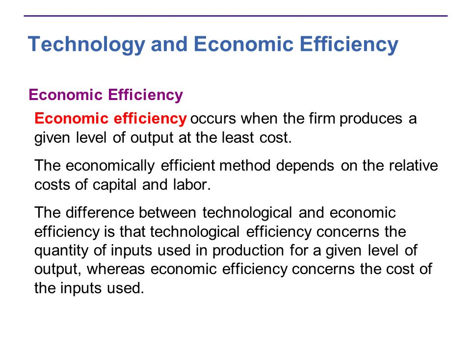 Technology and Economic Efficiency Economic Efficiency Economic efficiency occurs when the firm produces a given level of output at the least cost. Th