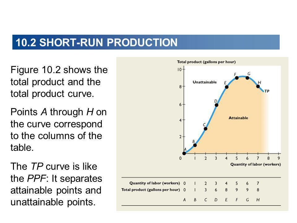 Figure 10.2 shows the total product and the total product curve. Points A through H on the curve correspond to the columns of the table. The TP curve