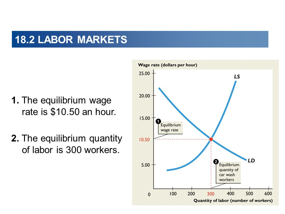 18.2 LABOR MARKETS 1. The equilibrium wage rate is $10.50 an hour. 2. The equilibrium quantity of labor is 300 workers.