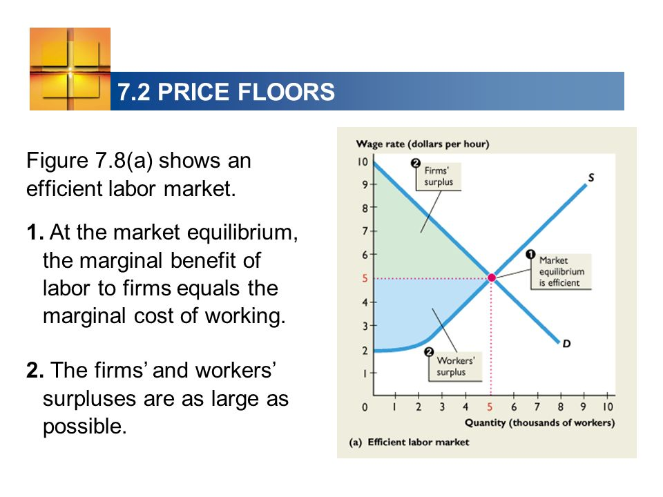 7.2 PRICE FLOORS Figure 7.8(a) shows an efficient labor market. 1. At the market equilibrium, the marginal benefit of labor to firms equals the margin