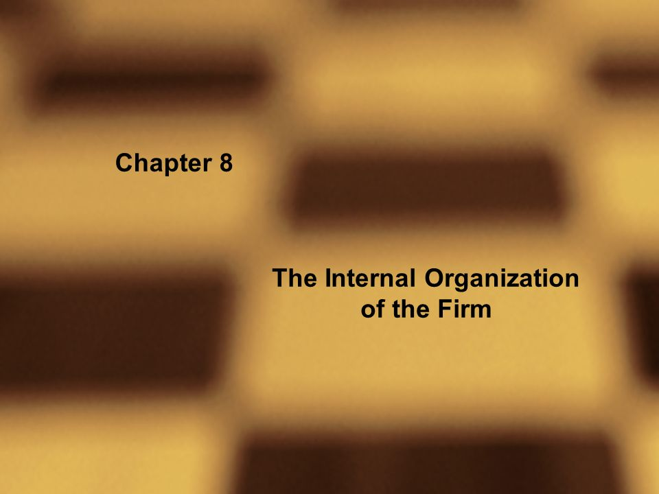 Chapter 8 The Internal Organization of the Firm
