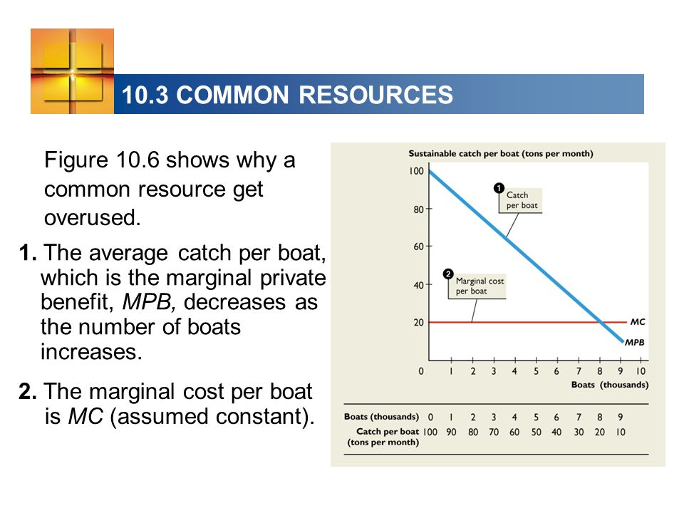 10.3 COMMON RESOURCES Figure 10.6 shows why a common resource get overused.