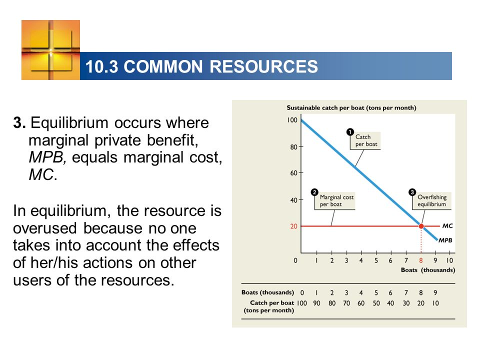 10.3 COMMON RESOURCES 3. Equilibrium occurs where marginal private benefit, MPB, equals marginal cost, MC. In equilibrium, the resource is overused be