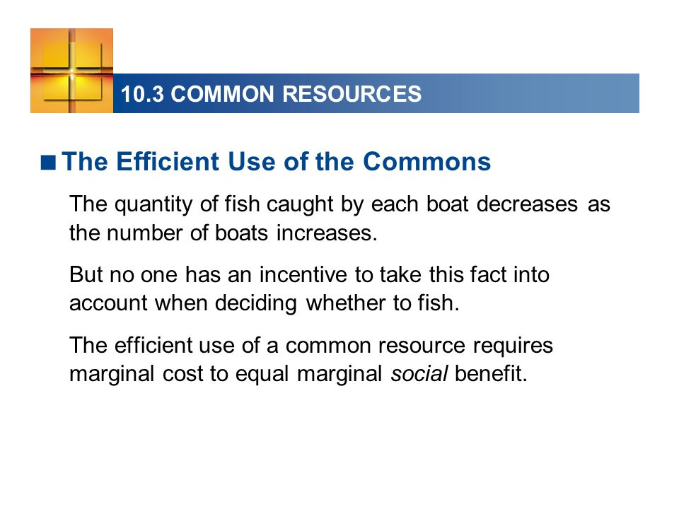 10.3 COMMON RESOURCES The Efficient Use of the Commons The quantity of fish caught by each boat decreases as the number of boats increases.