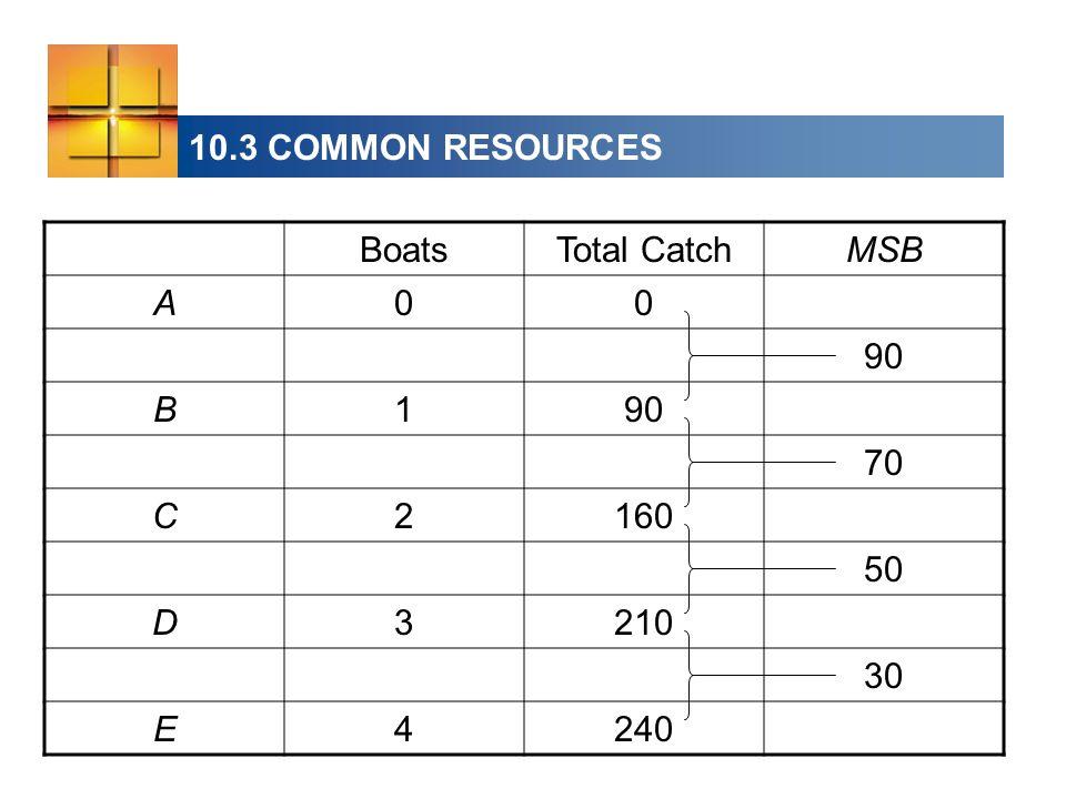 10.3 COMMON RESOURCES BoatsTotal CatchMSB A00 90 B1 70 C2160 50 D3210 30 E4240