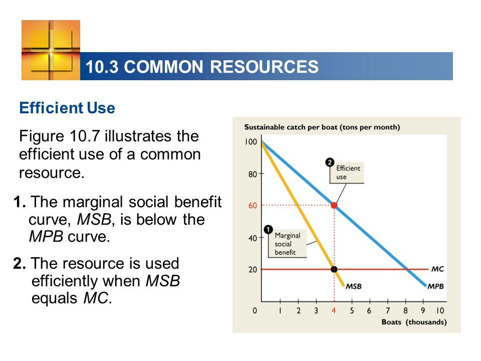 10.3 COMMON RESOURCES Efficient Use Figure 10.7 illustrates the efficient use of a common resource. 1. The marginal social benefit curve, MSB, is belo