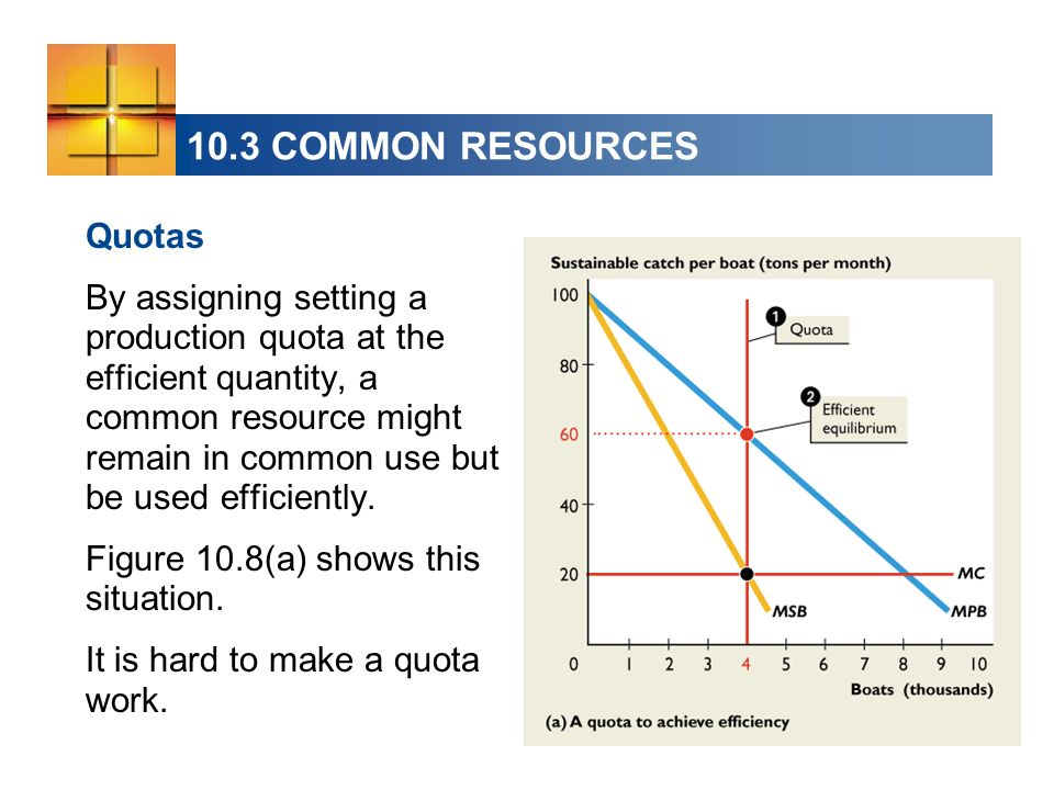 10.3 COMMON RESOURCES Quotas By assigning setting a production quota at the efficient quantity, a common resource might remain in common use but be used efficiently.