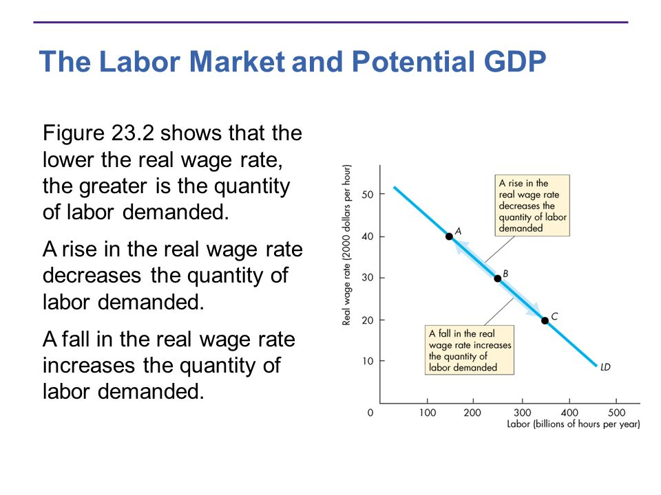 The Labor Market and Potential GDP Figure 23.2 shows that the lower the real wage rate, the greater is the quantity of labor demanded. A rise in the r