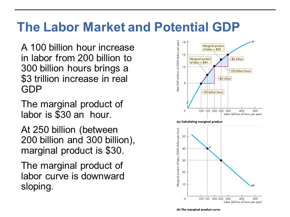 The Labor Market and Potential GDP A 100 billion hour increase in labor from 200 billion to 300 billion hours brings a $3 trillion increase in real GD