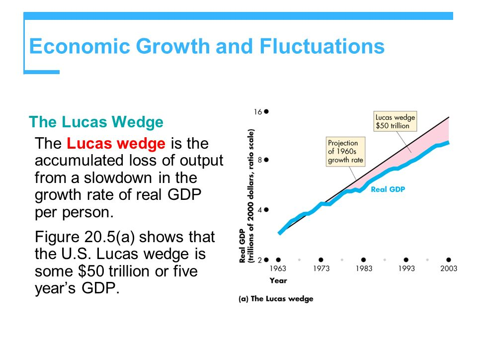 The Lucas Wedge The Lucas wedge is the accumulated loss of output from a slowdown in the growth rate of real GDP per person. Figure 20.5(a) shows that