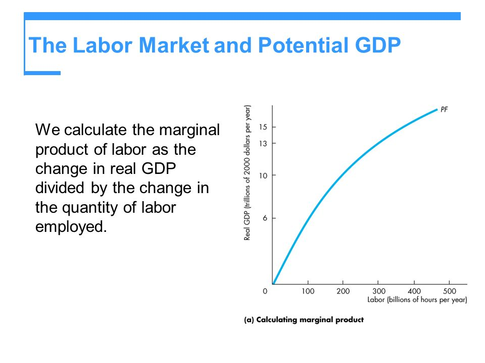 The Labor Market and Potential GDP We calculate the marginal product of labor as the change in real GDP divided by the change in the quantity of labor