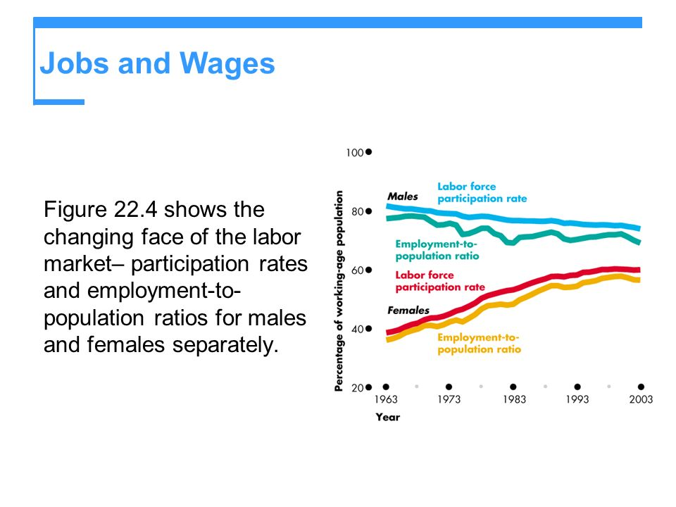 Jobs and Wages Figure 22.4 shows the changing face of the labor market– participation rates and employment-to- population ratios for males and females