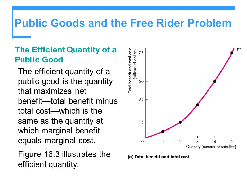 Public Goods and the Free Rider Problem The Efficient Quantity of a Public Good The efficient quantity of a public good is the quantity that maximizes