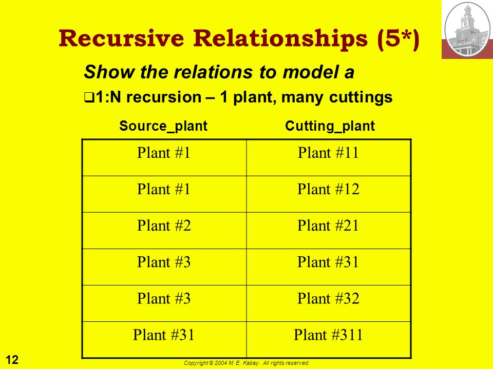 12 Copyright © 2004 M. E. Kabay. All rights reserved. Recursive Relationships (5*) Show the relations to model a 1:N recursion – 1 plant, many cutting
