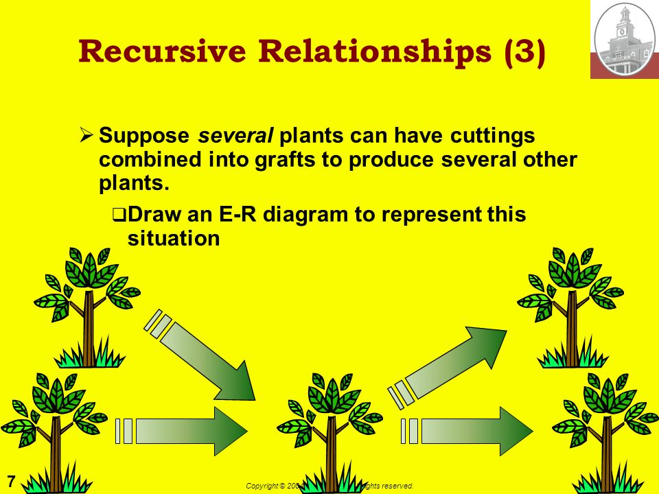 7 Copyright © 2004 M. E. Kabay. All rights reserved. Recursive Relationships (3) Suppose several plants can have cuttings combined into grafts to prod
