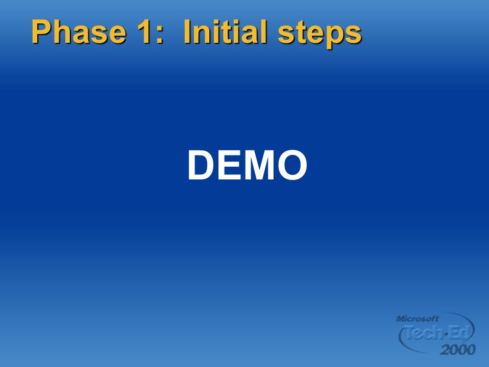 DEMO Phase 1: Initial steps