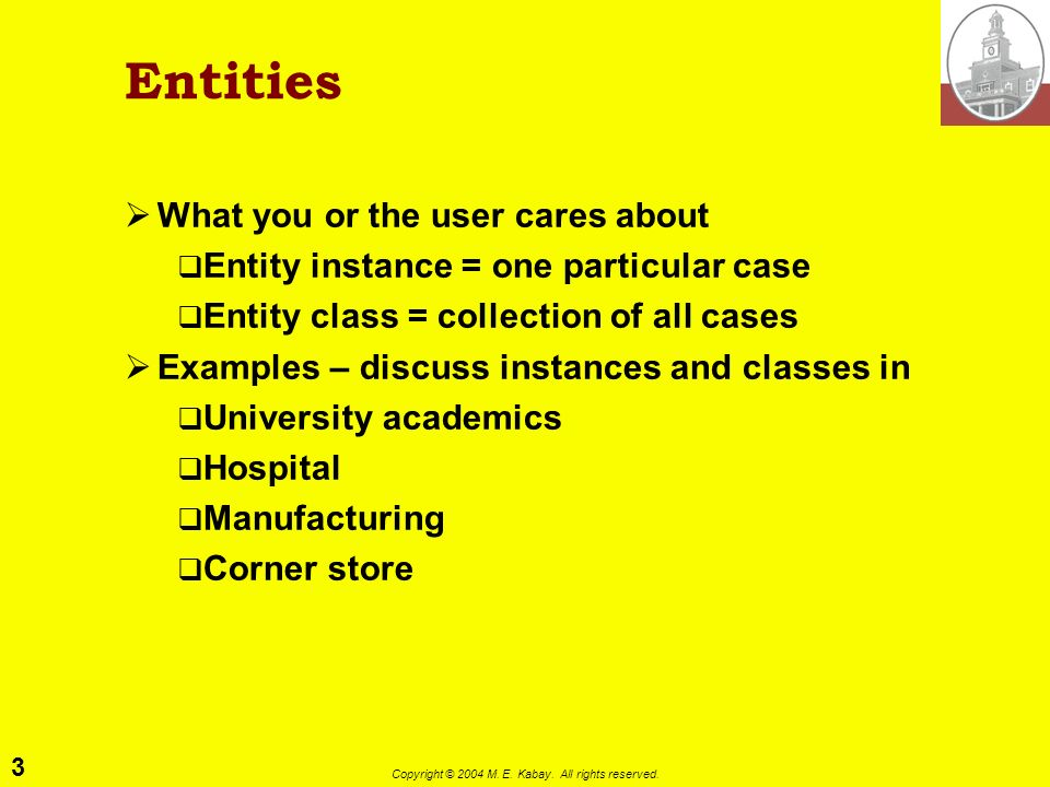 3 Copyright © 2004 M. E. Kabay. All rights reserved. Entities What you or the user cares about Entity instance = one particular case Entity class = co