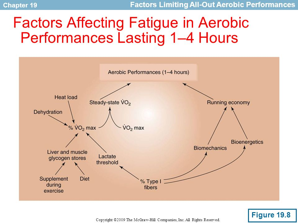 Chapter 19 Copyright ©2009 The McGraw-Hill Companies, Inc. All Rights Reserved. Factors Affecting Fatigue in Aerobic Performances Lasting 1–4 Hours Fi