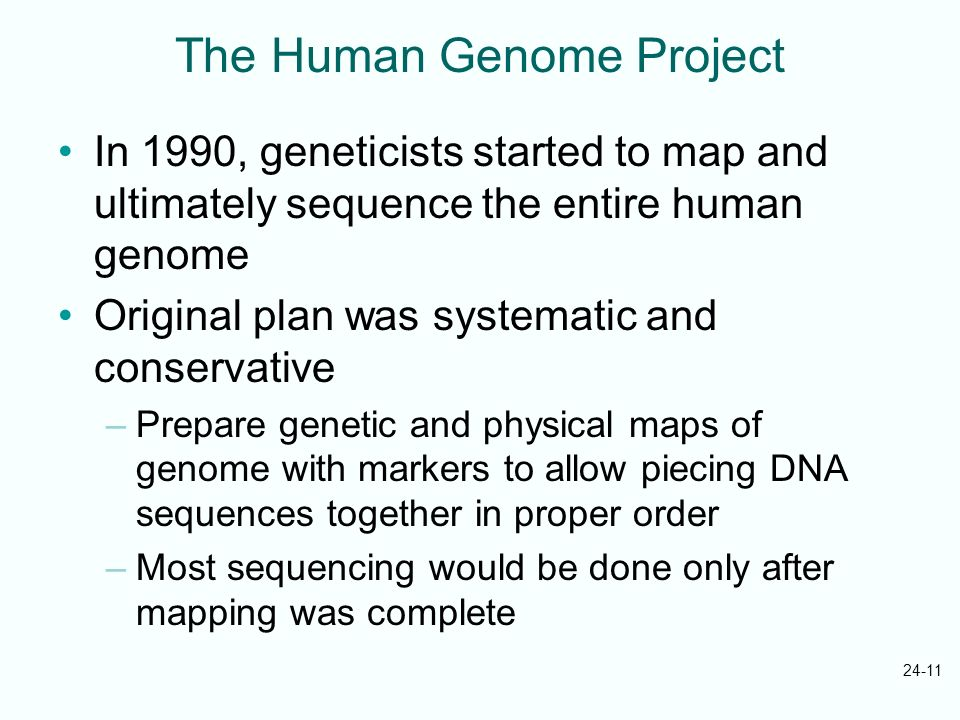 24-11 The Human Genome Project In 1990, geneticists started to map and ultimately sequence the entire human genome Original plan was systematic and co