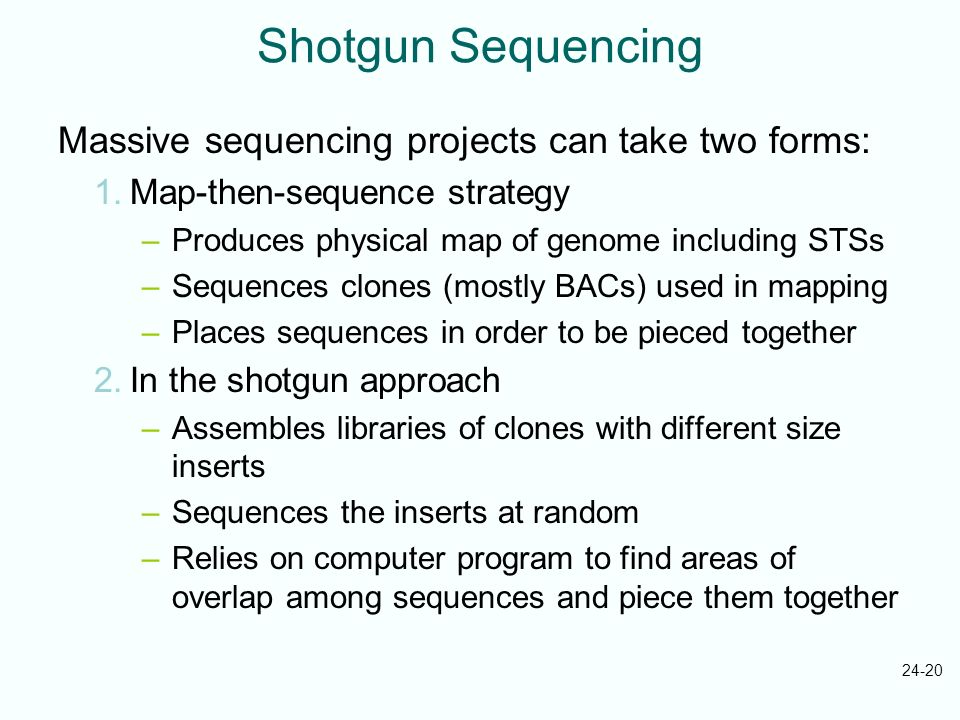 24-20 Shotgun Sequencing Massive sequencing projects can take two forms: 1.Map-then-sequence strategy –Produces physical map of genome including STSs