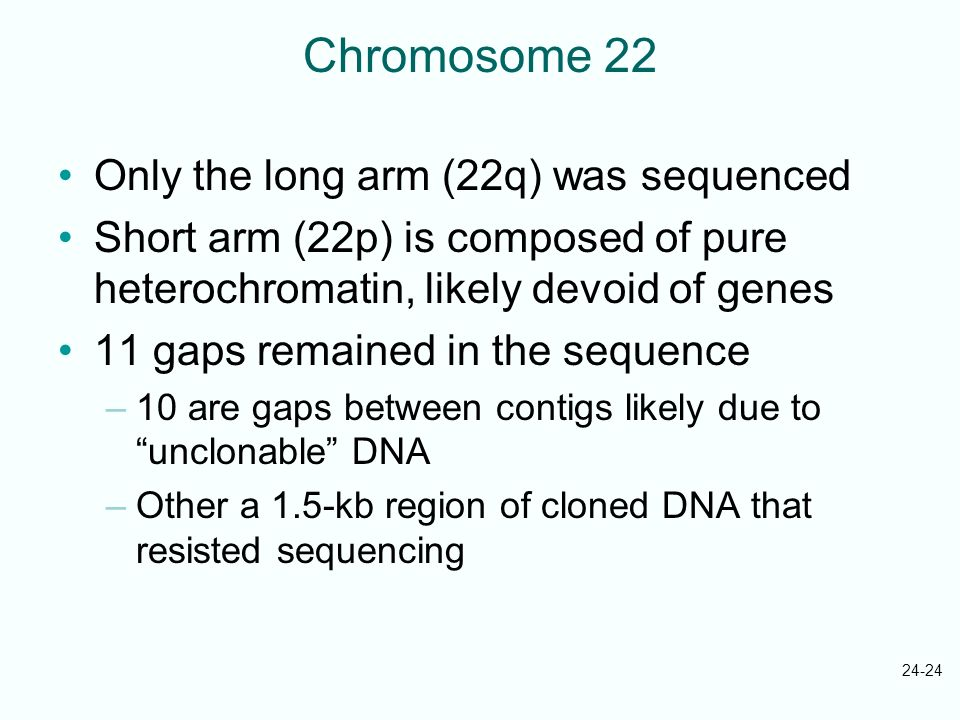 24-24 Chromosome 22 Only the long arm (22q) was sequenced Short arm (22p) is composed of pure heterochromatin, likely devoid of genes 11 gaps remained