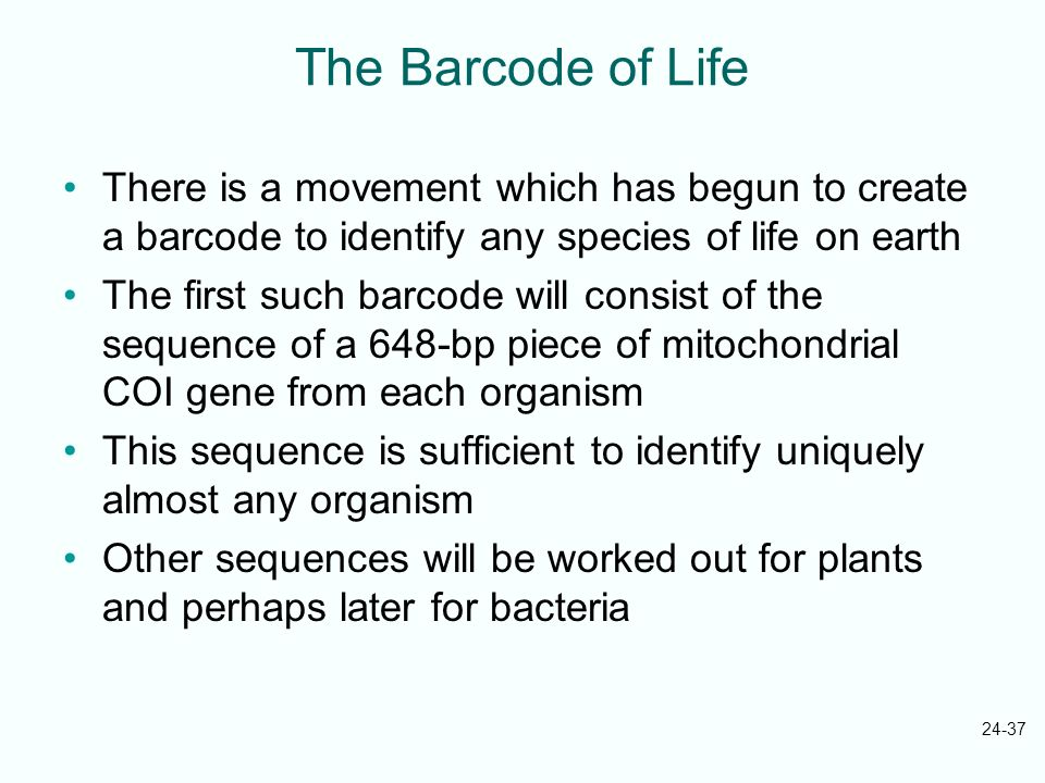 24-37 The Barcode of Life There is a movement which has begun to create a barcode to identify any species of life on earth The first such barcode will