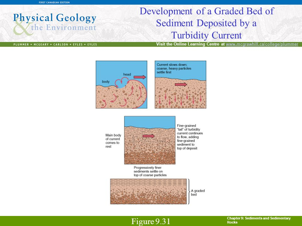 Chapter 9: Sediments and Sedimentary Rocks Visit the Online Learning Centre at www.mcgrawhill.ca/college/plummerwww.mcgrawhill.ca/college/plummer Deve