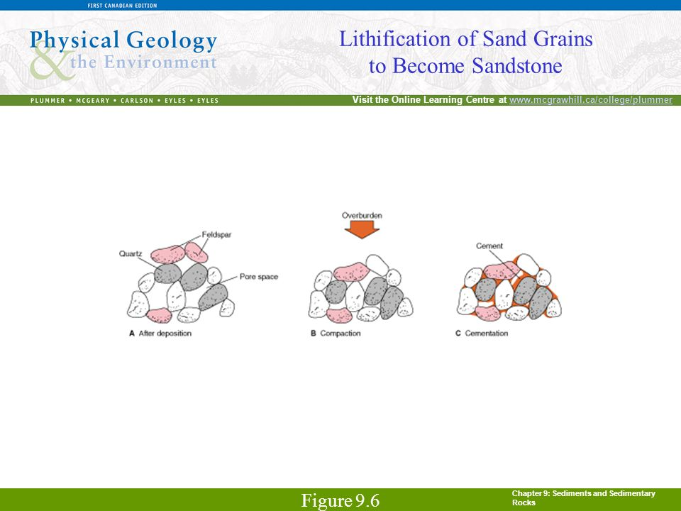 Chapter 9: Sediments and Sedimentary Rocks Visit the Online Learning Centre at www.mcgrawhill.ca/college/plummerwww.mcgrawhill.ca/college/plummer Lith