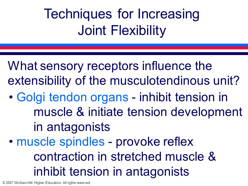 © 2007 McGraw-Hill Higher Education. All rights reserved. Techniques for Increasing Joint Flexibility What sensory receptors influence the extensibili