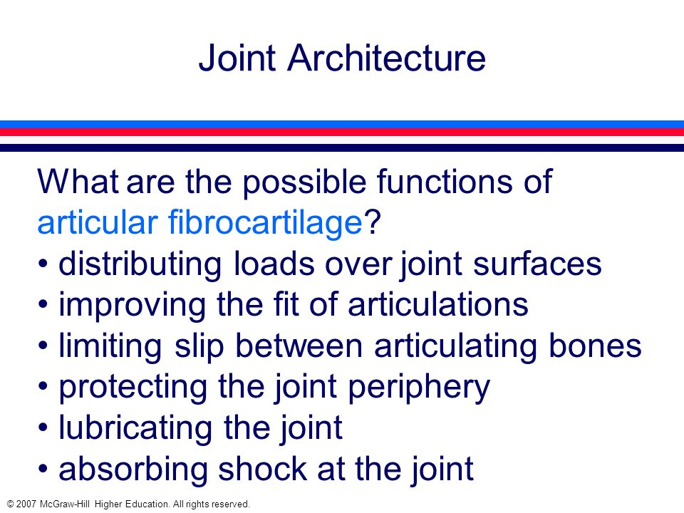 © 2007 McGraw-Hill Higher Education. All rights reserved. Joint Architecture What are the possible functions of articular fibrocartilage? distributing