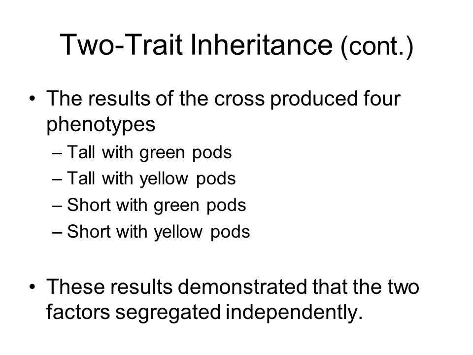 Two-Trait Inheritance (cont.) The results of the cross produced four phenotypes –Tall with green pods –Tall with yellow pods –Short with green pods –S