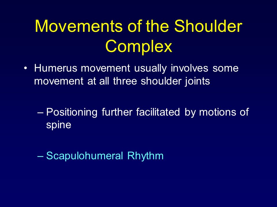 Movements of the Shoulder Complex Humerus movement usually involves some movement at all three shoulder joints –Positioning further facilitated by mot