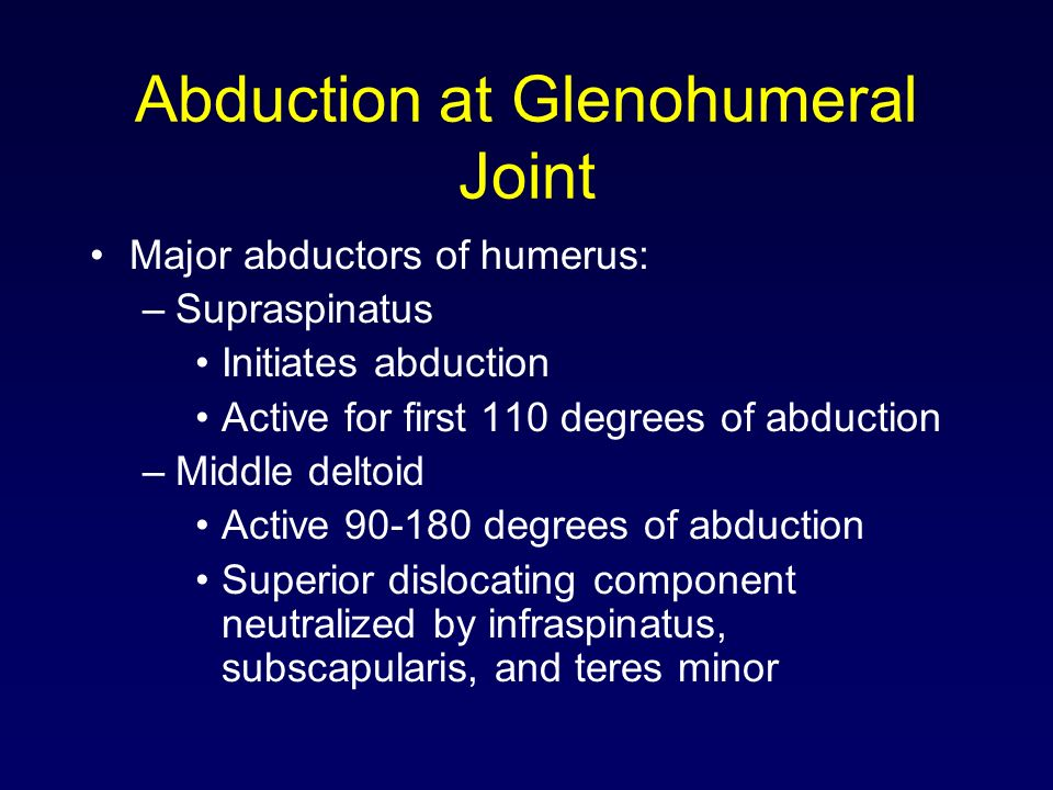 Abduction at Glenohumeral Joint Major abductors of humerus: –Supraspinatus Initiates abduction Active for first 110 degrees of abduction –Middle delto