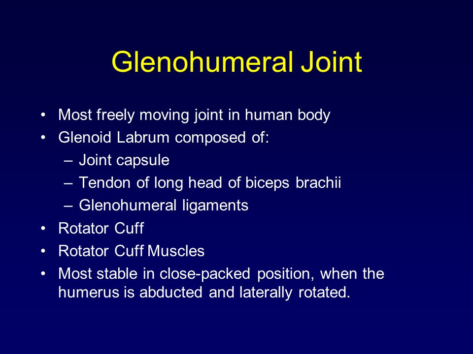 Glenohumeral Joint Most freely moving joint in human body Glenoid Labrum composed of: –Joint capsule –Tendon of long head of biceps brachii –Glenohume
