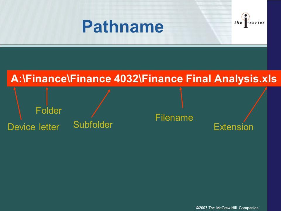 ©2003 The McGraw-Hill Companies Pathname A:\Finance\Finance 4032\Finance Final Analysis.xls Device letter Folder Subfolder Filename Extension