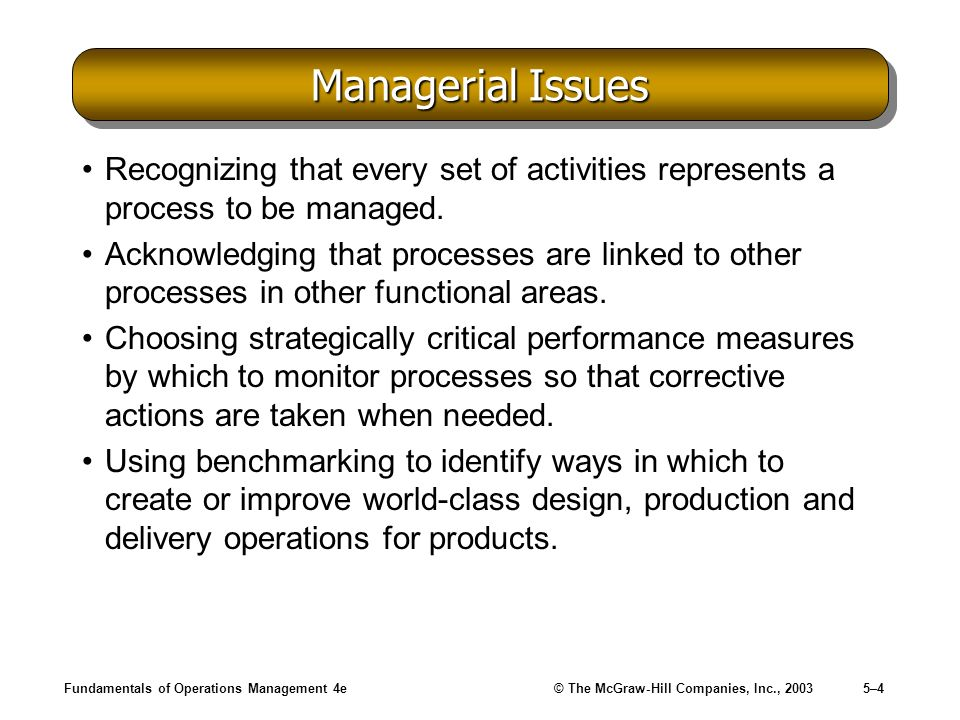 Fundamentals of Operations Management 4e© The McGraw-Hill Companies, Inc., 20035–5 Defining a Process Selecting a Process –Identifying the strengths and weaknesses of each processs capability to support the strategic focus of the firm on particular market segments.